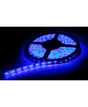 LEDQ Tira de LED AZUL 5M 5050 60 Led