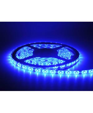 LEDQ Tira de LED Azul 5M 3528 60 Led
